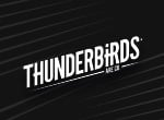 玩 Thunderbirds